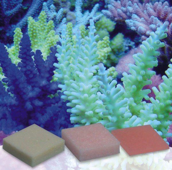 Korallen-zucht Automatic Elements - Kaliumjodid Fluor Konzentrat - Confezione da 5 pezzi