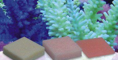 Korallen-zucht Automatic Elements - Amino Acid Concentrate - Confezione da 20 pezzi